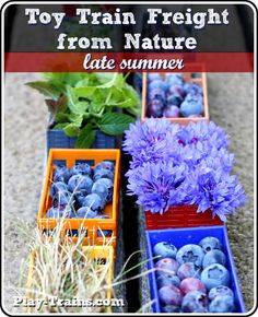Toy Train Freight from Nature: Late Summer @ Play Trains! http://play-trains.com/