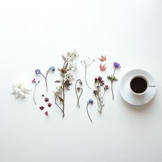 Spring is here by flatlayforever Like Instagram, Instagram Posts, Julia Smith, Live In The Present, Spring Is Here, Tea, Photo And Video, Storms, Caffeine