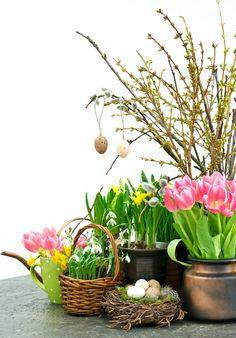 Wiosenne kwiaty cebulowe, a dekoracje wielkanocne Happy Spring, Easter, Plants, Flowers, Easter Activities, Plant, Planets