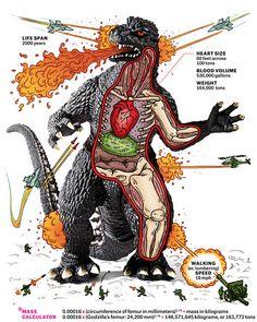 Godzilla's Anatomy by Andrew Rae, popularmechanics #Infographic #Godzilla