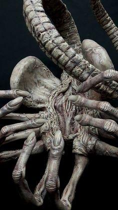 I have no idea who made this scale dead Facehugger (Aliens), but I stand amazed by its quality! Les Aliens, Aliens Movie, Alien Vs Predator, Arte Horror, Horror Art, Dark Fantasy Art, Dark Art, Hr Giger Art, Lapin Art