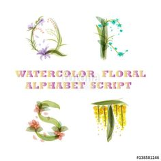 "Download the royalty-free vector ""vector floral hand draw vintage script  font watercolor style isolated on white background - Q R S T"" designed by quietword at the lowest price on Fotolia.com. Browse our cheap image bank online to find the perfect stock vector for your marketing projects!"