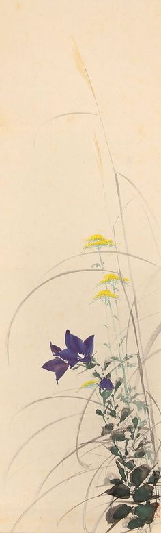 JIKU3689 jcSw JAPAN SCROLL IDE GAKUSUI FLOWER