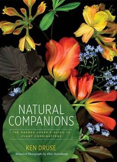 A new book from Leaf contributor Ken Druse!
