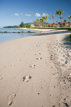 Footprints on the sand | Mauritius