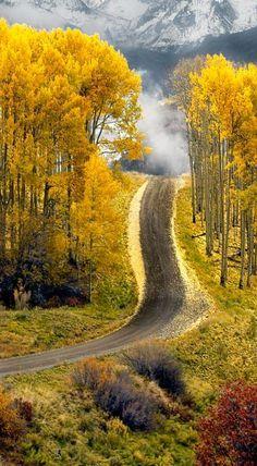 Aspen road in Boulder, Colorado.I do love Aspen Colorado! Beautiful World, Beautiful Places, Beautiful Pictures, Beautiful Scenery, Beautiful Roads, Amazing Photos, Simply Beautiful, Amazing Places, Absolutely Stunning