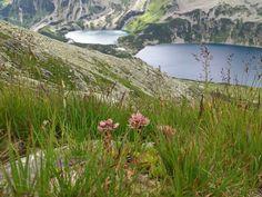 trip to Tatra