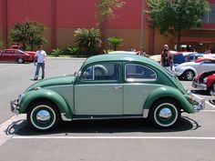 Slug Bug ~ Beetle Mania ~ Love Bug
