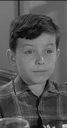 Hugh Beaumont, Jerry Mathers, Tony Dow, Leave It To Beaver, Tv Episodes, Old Tv Shows, Vintage Tv, Classic Tv, Elevator