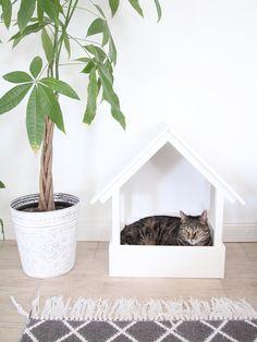 diy katzentipi - schlafplatz und kratzmöbel in einem | katzen, Gartenarbeit ideen