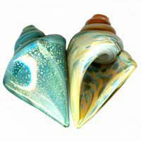 Our Lampwork Shell Beads - Perfect for Summer!