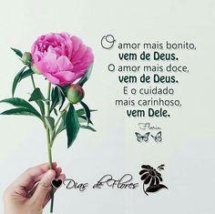 ✿⊱╮✿⊱╮✿⊱╮  O amor mais bonito, vem de Deus. O amor mais doce, vem de Deus. E o cuidado mais carinhoso, vem Dele. — Floriu