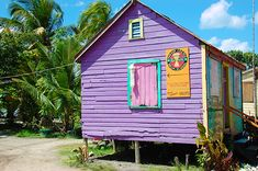 Purple Caribbean House