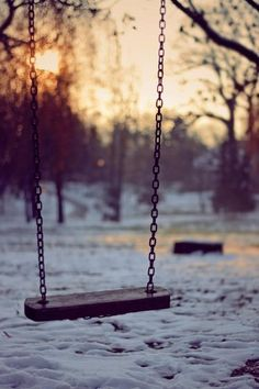 I remember swings like theses...Life was so different back in the day...