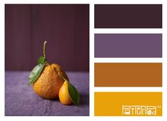 aubergine-purple, mustard