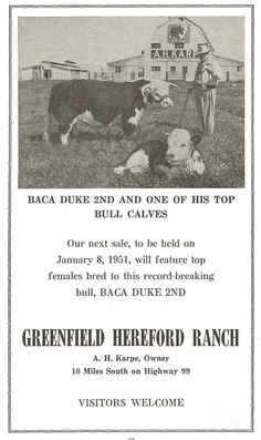 1950, Greenfield Hereford Ranch, Kern County, California.