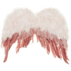 TOPSHOP Festival Feather Wings ($47) ❤ liked on Polyvore featuring accessories, wings, filler, topshop and cream