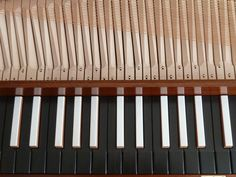 Un-fretted clavichord after Johann Bohak, 1794, Vienna. The keyboard showing carved key levers.