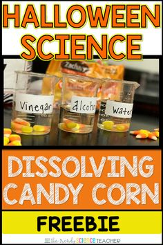 Halloween Science FREEBIE: Dissolving Candy Corn Do you need an engaging Halloween Science activity for your graders? Add some fall fun to your Science classroom with this Dissolving Candy Corn FREEBIE. Your elementary school students will love thi 4th Grade Science, Preschool Science, Middle School Science, Elementary Science, Science Experiments Kids, Science Classroom, Science Lessons, Science For Kids, Science Activities