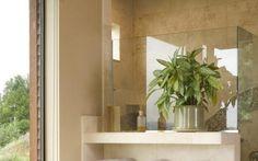 EN IMAGES. 6 plantes à faire pousser dans une salle de bains - Le Parisien