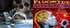 Water & fluoride