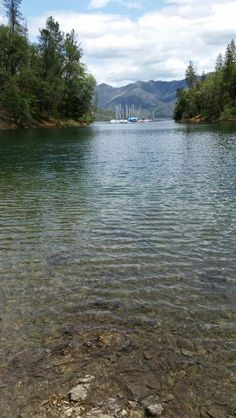 Hell hole reservoir high in the sierra good fishing for Whiskeytown lake fishing