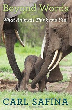 Beyond Words: What Animals Think and Feel by Carl Safina.  You can download or read this book, click link or paste url: http://bit.ly/1WRmcKM