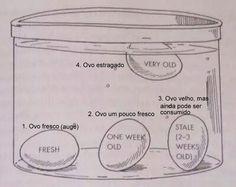 Até quem não gosta de cozinhar vai adorar estes truques!São dez truques de cozinha incrivelmente úteis, que serão de grande ajuda na hora de preparar alimentos.E, com certeza, todos vão facilitar a sua vida.Aqui estão eles:1. Cubos de gelo