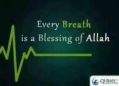 Qur'an English translation Quran With English Translation, A Blessing, Blessed, Reading, Reading Books