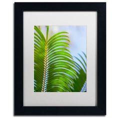 Trademark Art Palm Frond by Ariane Moshayedi Framed Photographic Print Size: