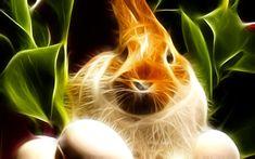 animal fractals | fractal animals by rydena digital art photomanipulation animals plants ...