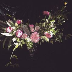 by Opulent Garden Photo And Video, Garden, Flowers, Instagram, Garten, Florals, Gardens, Flower, Blossoms