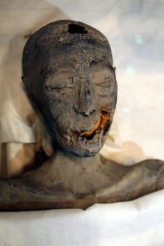 King Tut was the offspring of incestuous parents. This lovely young lady was not only King Tut's mother, but also the sister of his father, Akennaten. Ancient Egypt, Ancient History, Ancient Ruins, Ancient Art, World Trade Center Collapse, Egyptian Mummies, Egyptian Pharaohs, Egyptian Mythology, Egypt Mummy