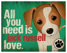 Jack Russell Art Print All You Need is Jack