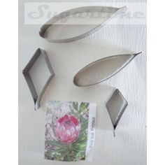 Set includes 4 stainless steel cutters to make protea flowers. Cutters range in size x down to x Sugar Paste Flowers, Fondant Flowers, Cake Flowers, Protea Flower, Australian Flowers, Traditional Wedding Cakes, Sugar Craft, Fondant Figures, Cake Icing