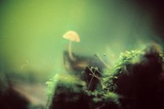 Tuane Eggers_Photography_7
