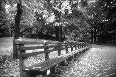 Black and White Cityscape Paintings | Park Bench Fall in New York City Fine Art Black and White Cityscape ...