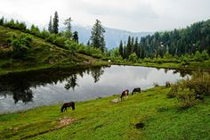 Hiking trip From Shogran to Siri Awasome Places