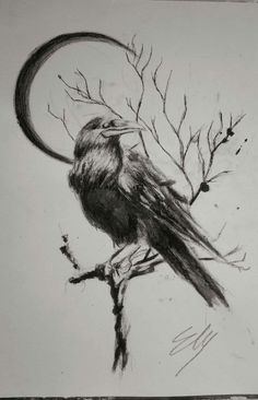 Little Crow for tattoo. Ink And acrylic on Canvas Tattoo Ink, Crow, Artworks, Canvas, Animals, Tatoo, Tela, Crows, Animales