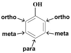 ortho benzene | ... are the ortho , meta , and para positions around the benzene ring