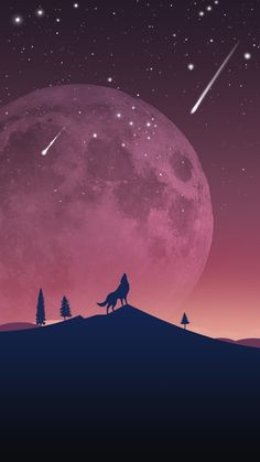 Wolf Wallpaper Galaxy S7 Edge | Free Wallpaper Phone