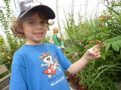 Winnipeg Zoo - Butterfly Conservatory - my son with his first butterfly on his finger. Conservatory, Finger, Butterfly, T Shirt, Photos, Kids, Women, Fashion, Pictures