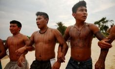 Four Amazonian tribes have joined forces to oppose the construction of #hydroelectric dams in their territory as the Brazilian government ramps up efforts to exploit the power of rivers in the world's biggest forest.