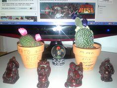"""Para cualquier persona, pueden ser dos simples cactus.., pero para Tato y para mí, tienen un significado muy especial: Representan el recuerdo de un inolvidable fin de semana de crecimiento personal y felicidad de formar parte de Algo Grande. Son dos """"seres vivos"""" que vamos a """"cuidar y mimar"""", como la madre que cuida a su hijo. Representan la esencia de nuestros sueños, que lograremos y celebraremos con todos los compañeros de la Tribu."""