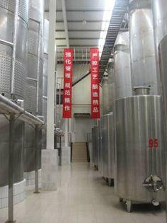 VIGNES ET VINS EN CHINE