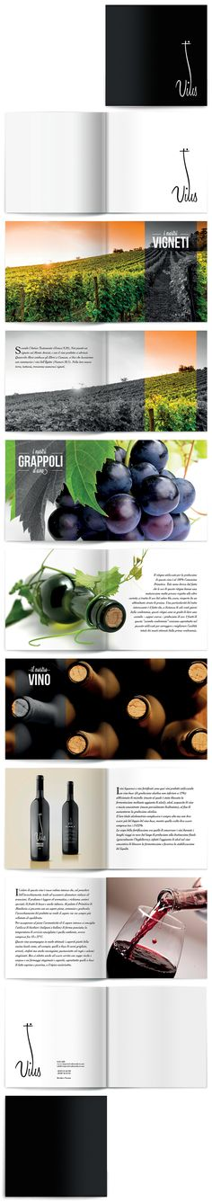 Brochure of wine. I love the design and simplicity of this brochure. Design Brochure, Brochure Layout, Graphic Design Layouts, Layout Design, Brochure Cover, Web Design, Book Design, Print Design, Nail Design