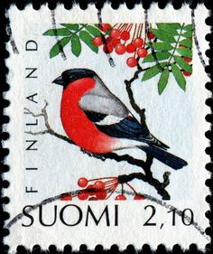 Birds Perched, Birds Flying, Birds aground - Stamp Community Forum - Page 20 Postage Stamp Collection, Bullfinch, Bird Perch, Small Art, Animals Images, Retro Christmas, Stamp Collecting, Poster, Postage Stamps