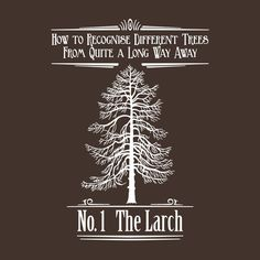 No.1 The Larch