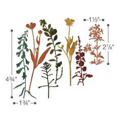 Sizzix thinlits dies Wildflowers #2 Time Holtz