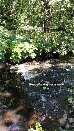 Cool Instagram, Creative Instagram Photo Ideas, Nature Instagram, Instagram Story Filters, Instagram Story Ideas, Witty Instagram Captions, Nature Story, Applis Photo, Beautiful Nature Scenes